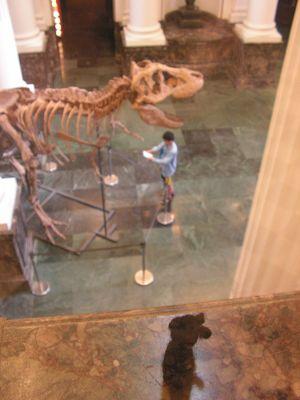 博物館の中4